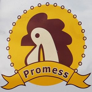 promess piletina